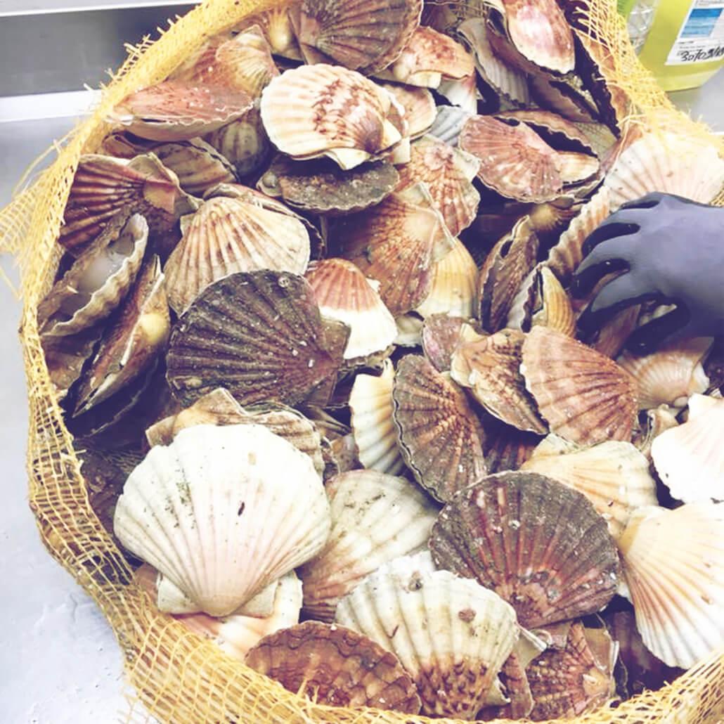 Produits frais Hôtel Restaurant La Table de Jeanne - Erquy